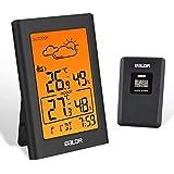 BALDR Väderstation trådlös med utomhussensor, digital termometer hygrometer inomhus och utomhus rumstermometer hydrometer fuk