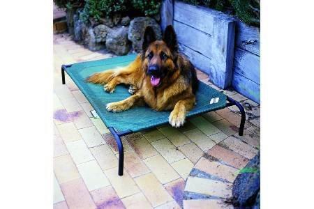 Intermas – Lit pour gros chien 110 x 65 cm