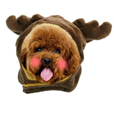 (ZMMAperücke Katze Hund Hut perücke Haar hat die kleine Prinzessin zöpfe lustig perücke Kopfschmuck,Jeder Hut,XS)