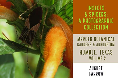 Insects & Arachnids: A Photographic Collection: Mercer Arboretum & Botanical Gardens: Humble, Texas - Volume 2 (Arthropods of Mercer) (English Edition) -