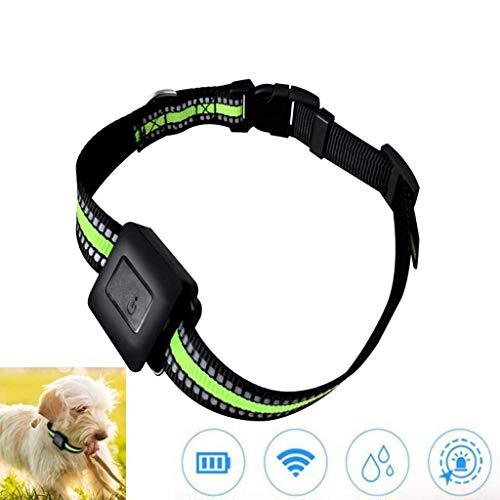 Lcxghs Pet Tracker, Mini GPS Locator Dog, Impermeabile/Registrazione/Visualizza cronologia Traccia, NIU Yang Perdita Ma, compatibili con Le Piattaforme Mult