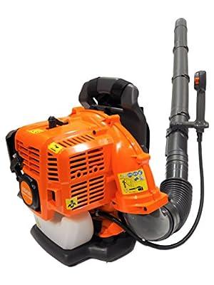 eSkde 41cc Benzin, mit 2Leaf Blower Hochleistungs mit 2Stroke mit Gebläse