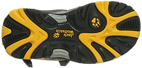 Jack Wolfskin BOYS WATERRAT, Jungen Sport- & Outdoor Sandalen, Grau (burly yellow 3800), 31 EU (12 Kinder UK) -