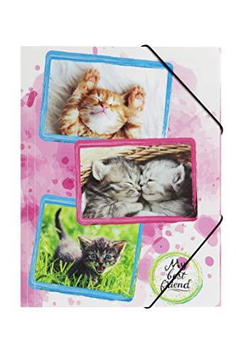 Pagna 21661-15 - cartella portadocumenti con elastico, formato a4, motivo: gatti, in polipropilene, con elastico agli angoli