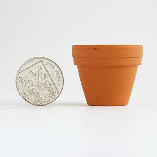 4-cm-mini-terracotta-pots-pack-of-10-36-mm-diameter