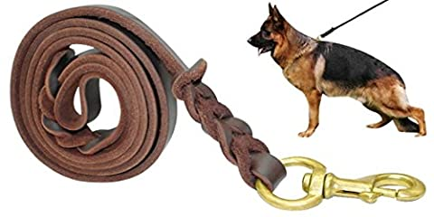 Fairwin Braided Leather Dog Lead - 1.7M Military Grade Genuine