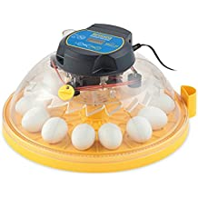 Brinsea Maxi II Advance Incubadora de huevos