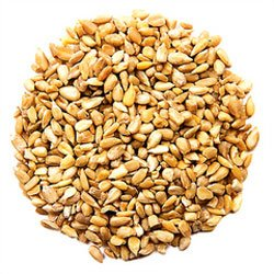 Loose Sunflower Heart Seeds (Bird Food) - 3ltr bag