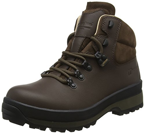 Explorer Gtx Boot (Berghaus Damen Explorer Active M Gore-tex Walking Boots Trekking- & Wanderstiefel, Braun (Dark Brown Dc2), 40 EU)