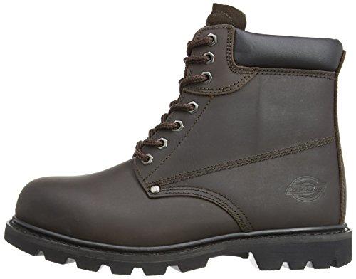 Dickies Cleveland CLEVE8H Chaussures de sécurité Miel Pointure 42 (Import Grande Bretagne) Marron