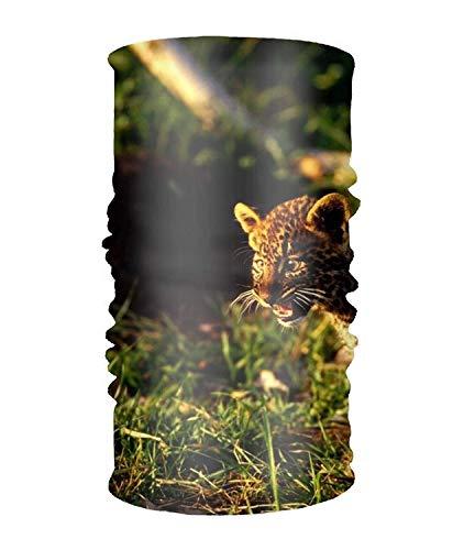 Women' Soft Stretch Headband Animal Leopard Cats Head Wrap Turban Scarf Lacer Farm