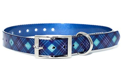 Royal White Salt (Zaley Designs Die Titan Halsband Hund Halsbänder, Small, Navy Blue, Royal Blue, Mint, Silver, White)
