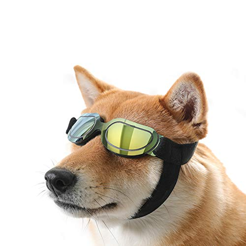 QNMM Hundesonnenbrille Goggles Pet Sonnenbrille, Schutz Winddicht beschlagfrei, geeignet für kleine und mittelgroße Hunde Katzen mit verstellbarem Gummiband für Reisen, Skifahren und Anti-Fog,Green