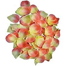 Lote/Conjunto de 6 Piezas - Lote con 500 pétalos de Rosas de Color Rosa