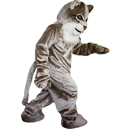 Langteng Katze grau hariy Cartoon Maskottchen Kostüm Echt Bild 15-20Tage - Maskottchen Katze Kostüm