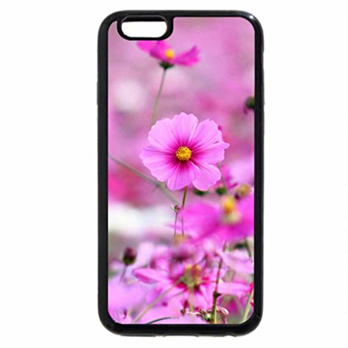 iPhone 6S / iPhone 6 Case (Black) Pinky field