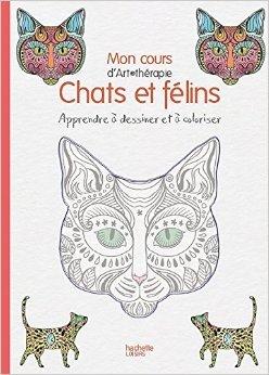 mon-cours-dart-thrapie-chats-flins-apprendre-dessiner-et-coloriser-de-mademoiselle-eve-22-avril-2015