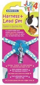 Rabbit Harness & lead set Blue Polka Test
