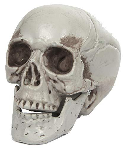 EUROCARNAVALES Calavera 10x9x8cm - Halloween, Lapidas, Esqueletos y Calaveras