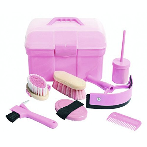 Homestead-Complete-Horse-Grooming-Box-Pink