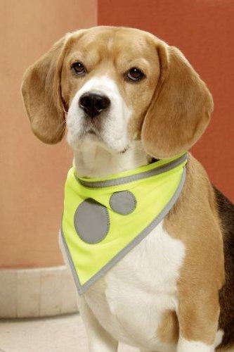 KARLIE Sicherheits-Halstuch SAFTY DOG gelb für Hunde S 24-30cm