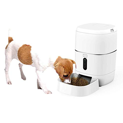 Zun Gu Xuan 6L große kapazität pet Feeder WiFi Fernbedienung intelligentes Timing quantitative automatische Feeder Hund Katze Kamera dual stromversorgung Video weiß Feeder Pet Feeder -