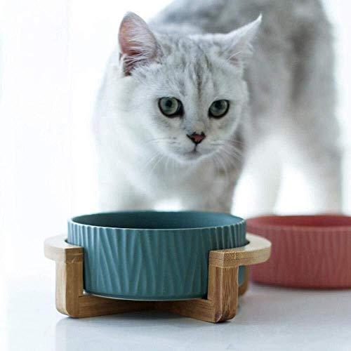 BOWLHANGG Tazón Agua for Alimentos for Mascotas for