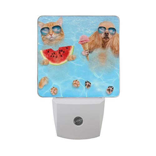 DFISKK Nachtlicht Set of 2 Cat and Dog in Sunglasses Hold Watermelon and Ice Cream Relaxing in Summer Clear Blue Sea Water Auto Sensor LED Dusk to Dawn Night Light Plug in Indoor for Adults -