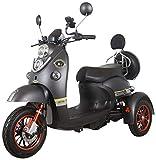 Élégant Récréatif Scooter de Mobilité électrique Adult 500W 60V - Green Power