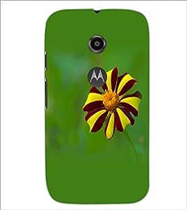 PrintDhaba Flower D-1962 Back Case Cover for MOTOROLA MOTO E2 (Multi-Coloured)