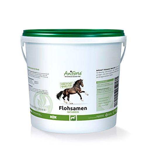 AniForte Indische Flohsamen Naturrein 1kg - Naturprodukt für Pferde