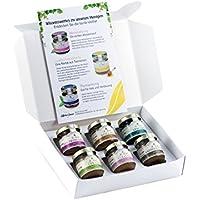 """Honig Geschenk-Set """"Exotisch"""" - 6 Honige aus aller Welt - Avocado-Honig, Quillaya-Honig, Bio-Tropenblüten-Honig, Urwald-Honig, Yukatan-Honig, Kaffeeblüten-Honig (6 x 50g)"""