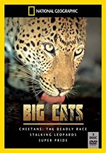 National Geographic: Big Cats [DVD]