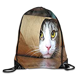 angwenkuanku Coole Katze Drawstring Bag Sport Sack Bag Rucksack mit Seitentasche Leichte einzigartige 16.9x14.2-14201
