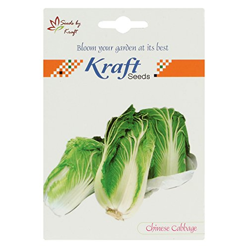 Chinese Cabbage Seeds by Kraft Seeds