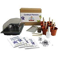 Flores para cócteles - Mrs Henri's Plant Growing Kit. Cultiva 6 flores aromáticas para cócteles desde su semilla. El regalo ideal para aquellos que disfrutan haciendo bebidas. El Kit de cultivo de plantas Premium incluye todo lo que necesitas para comenzar.
