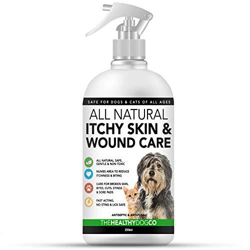 All Natural Spray per Prurito e Ferite di Cani e Gatti | Spray Cutaneo Antiprurito per Animali | Aiuta nel Trattamento di Prurito, Lesioni e Ferite | Sicuro, Antimicotico e Antisettico