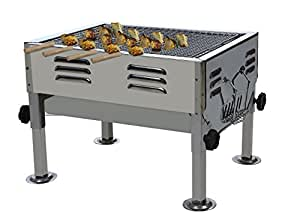 Fabrilla Portable Charcoal Barbeque Grill Set (Silver): Amazon.in: Garden &  Outdoors