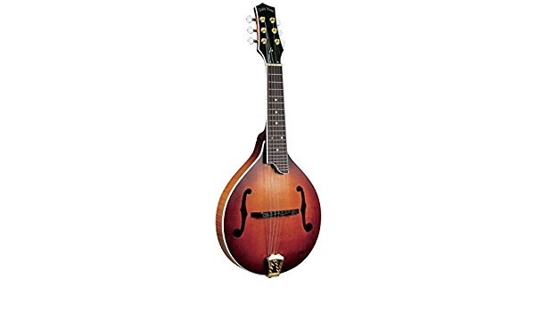 Gold Tone GM-6+ 6 弦吉他曼陀林带拾音器:Amazon.in:乐器