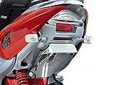 Universeller Heck-Kennzeichenhalter Peugeot Jetforce Speedfight Vivacity Elystar