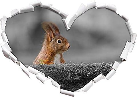 écureuils drôles derrière un tronc d'arbre noir / forme de coeur blanc dans le regard 3D, mur ou un autocollant de porte Format: 92x64.5cm, Stickers muraux, Stickers muraux, Wanddekoratio