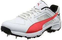Puma Mens Cricket Spike Sports Shoes