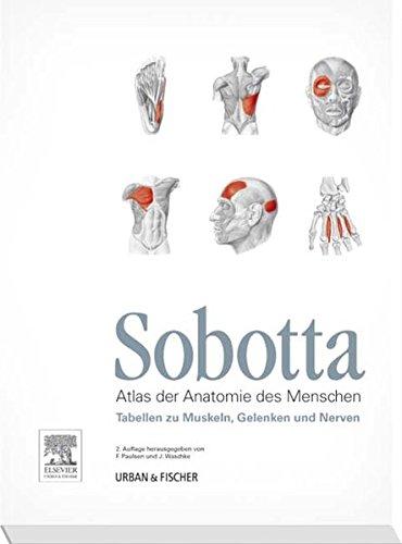 Sobotta Tabellen zu Muskeln, Gelenken und Nerven: Tabellen passend zur 23. Aufl. des Sobotta-Atlas