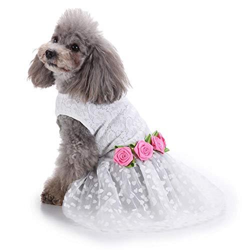 Herzen Der Prinzessin Kostüm - Feli546Bruce Hunde-Accessoires, modisches Kleid aus Spitze, Rosen-Herz-Prinzessinnen-Kostüm für Hunde