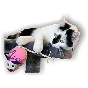 LunaChild Handmade Maus Spielzeug Handgefertigt WUNSCHNAME Katzenspielzeug Baldrian Katzenminze Name Rassel pink Katze personalisiert Geschenk