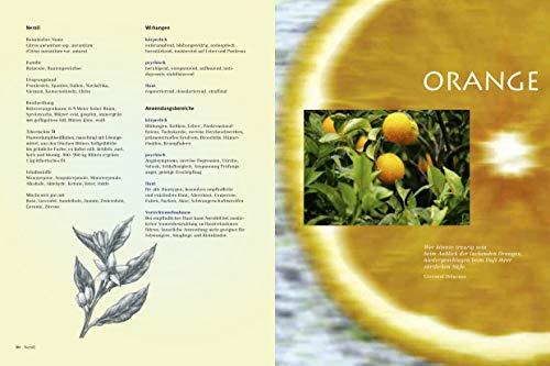 Himmlische Düfte: Das grosse Buch der Aromatherapie - 4