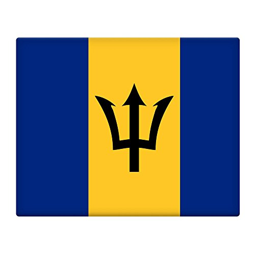 Barbados Flagge 25,4x 20,3cm selbstklebend Blechschild 019