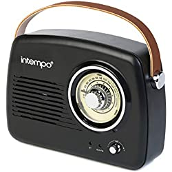 Intempo Ee3332blustkeu Enceinte Bluetooth avec Radio FM et Sangle de Transport en Cuir, Noir, 21cm