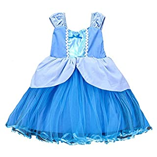 About Time Co Girls' Princess Tulle Party Fancy Dress (2-3 years, Cinder Blue)