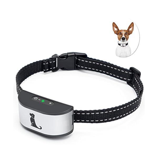 ACETEND-Bark-Collars